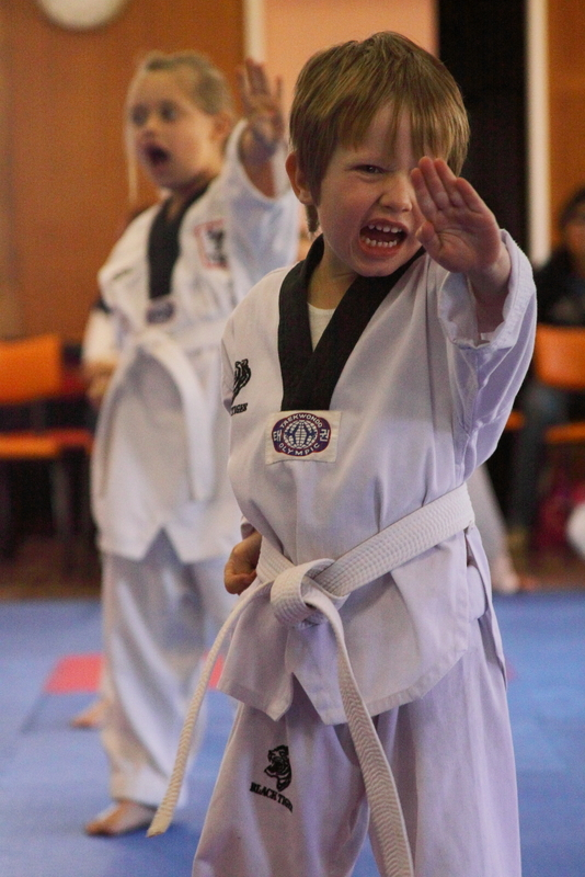 Pre school martial arts program